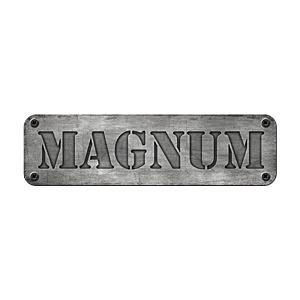 Wieczór Panieński Gdańsk - Magnum Arena